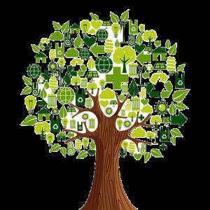 محیط زیست و بازیافت زباله